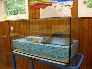 Wasserschule-Magnettafeln 031